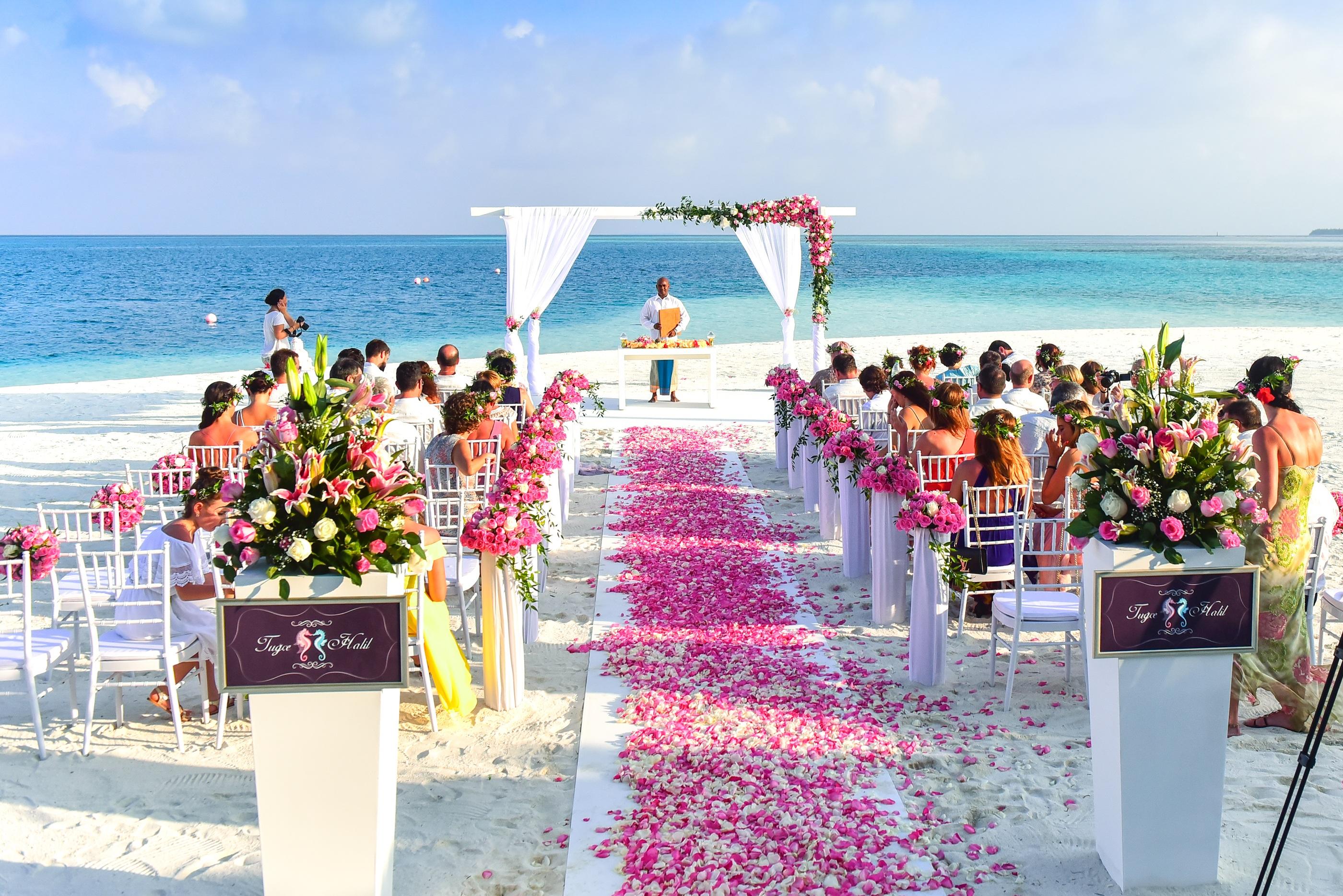 entrada para o altar com tapete e pétalas de rosas
